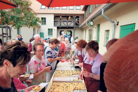 Kuchen und Wein | Zweites Großräschener Erntedankfest am 9.10.
