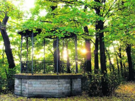 Mehr Pflege für den Stadtpark gefordert