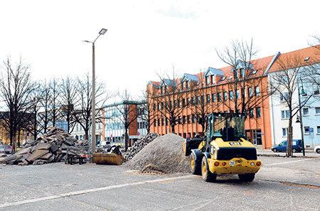 Linden am Lindenplatz fallen