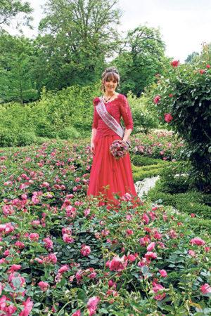 Forst: Countdown für neue Rosenkönigin läuft