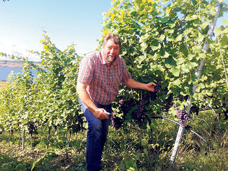 Cottbus: Vorfreude auf den 2016er-Jahrgang steigt | Jungweinprobe am 28. April