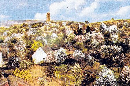 Guben: Gubener Baumblüte lockte Gäste