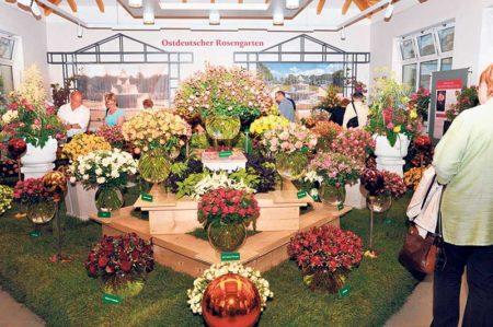 Forster Rosengartenfesttage bekommen vierten Veranstaltungstag