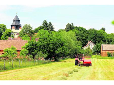 Der Fürst besucht seine Mühle in Horno