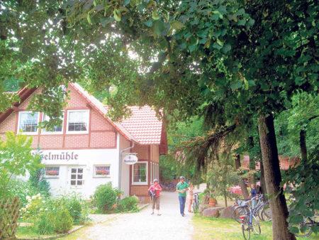 Gräbendorfer See im Weichbild des Spreewalds