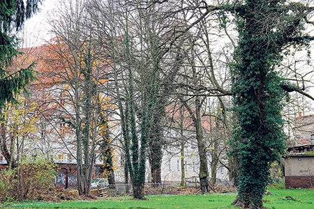 Spremberg: Schloss soll wieder sichtbar werden