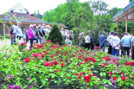 Forst: Im Rosengarten ist Saisoneröffnung
