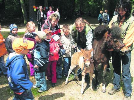 Der Cottbuser Tierpark lockt am 1. Juni