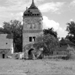 Damals war´s Niederlausitz: Das alte Geschlecht der von Wiedebachs