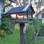 Ratgeber Tier: Lausitzer füttern heimische Vögel