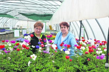 Frauendorf bereitet sich auf den Frühling vor