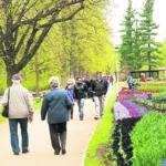 Frühling in der Rosenstadt Forst