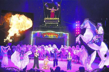 """Circus """"William"""" ist in Cottbus ab dem 15. März 2019"""