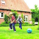 Ratgeber Bauen und Leben: Rasen richtig pflegen