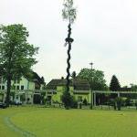 Jugend stellt Bäume auf