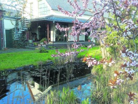 Ratgeber Bauen und Leben: Der Frühling zieht ins Haus