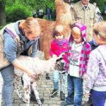 Beim Cottbuser Tierparkdirektor zu Gast