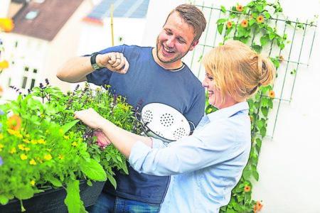 Der Balkon wird zur Gartenoase