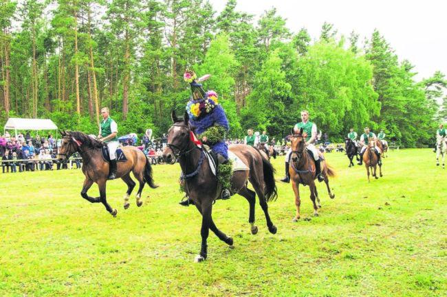 Kornblumen und Reiter in Casel