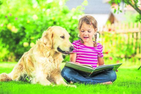 Ratgeber Tier: Rohfütterung bei Haustieren