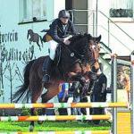 Über 300 Pferde nehmen Hindernisse beim Reitturnier in Sedlitz