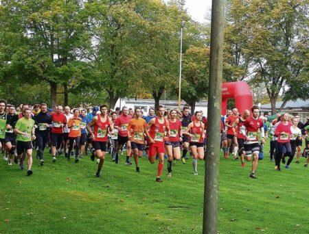 Cottbus: Laufen im Park