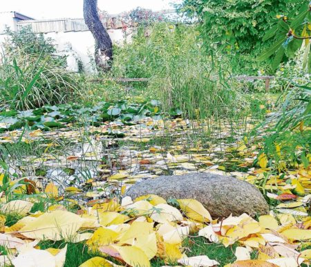 Region: Herbst auf den Gräbern
