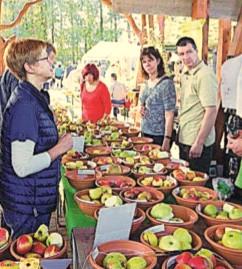 Region: Herbstzeit ist Pflanzzeit