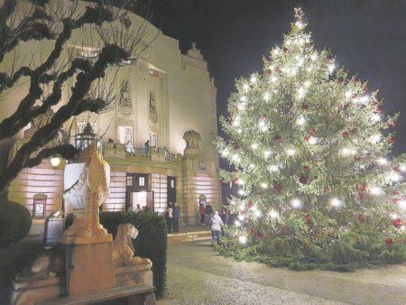 Vorhang auf zum  Jahreswechsel in Cottbus