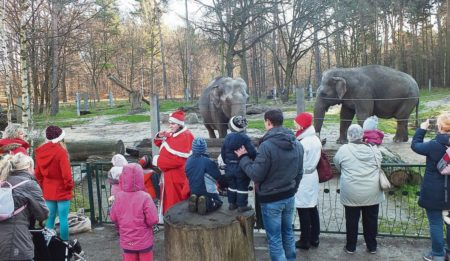 Nikolaus im Cottbuser Tierpark