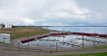 Frühlingserwachen am Großräschener See