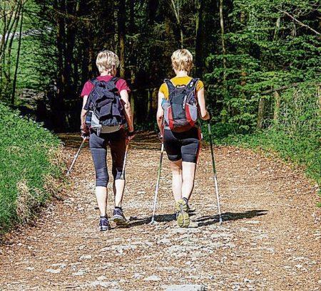 Region: Nordic Walking: Der Sport für jedes Alter