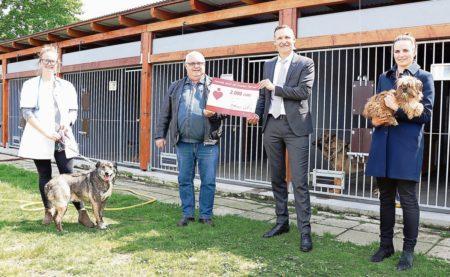 Cottbus: Tierisch starker Partner