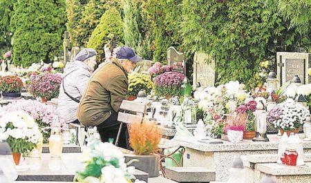Region: Blütenfülle auf dem Grab ist gut für Insekten