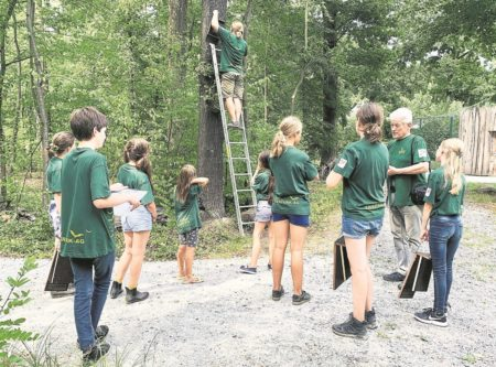 Cottbus: Fledermäuse im Tierpark
