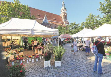 Region: Top-Hotelier liebäugelt mit Sedlitzer Strand