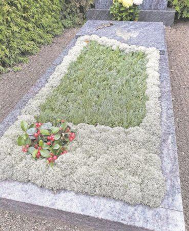 Region: Stille in den Gärten der Erinnerung