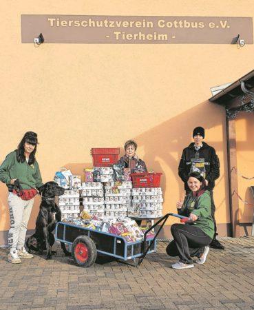 Geschenkezauber in Cottbus