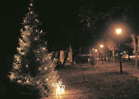 Weihnachtsbaumromantik in Kolkwitz