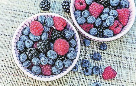 Pflanztipps für Beerensträucher
