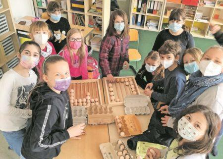 Hühnerprojekt an Forster Archimedes Grundschule