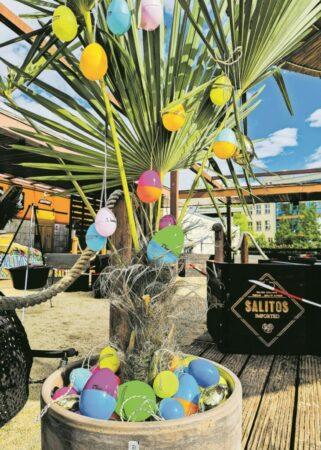 Eier suchen an Pfingsten in Cottbus