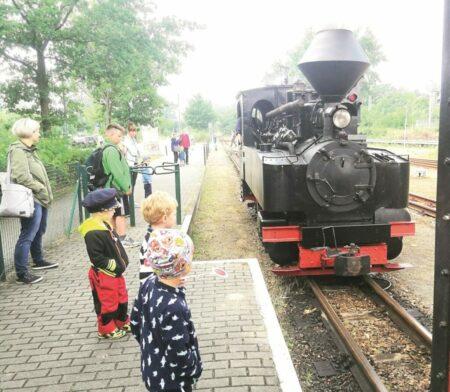 Bad Muskauer Waldeisenbahn gibt Gastspiel in Cottbus