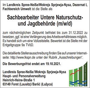 """Faustball: Freienhufen bei """"Nix-Turnier"""" erfolgreich"""