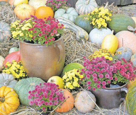 Oktober in Raddusch
